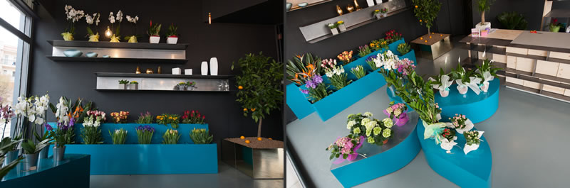 Fiori di Joe flower shop retail design M12ad