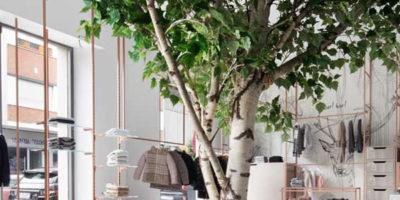 Lo Studio Tenca & Associati realizza L'Albero dei Desideri.