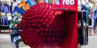 Alessandro Luciani seduce Milano con 600 rose rosse