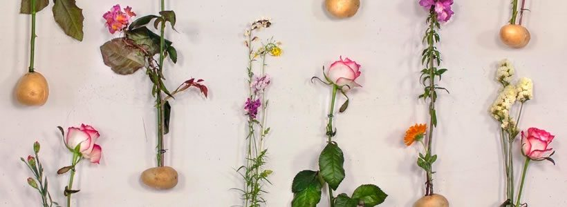 "Piuarch presenta ""Flowerprint"" il ricamo floreale verticale."
